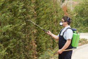 women spraying for pest control
