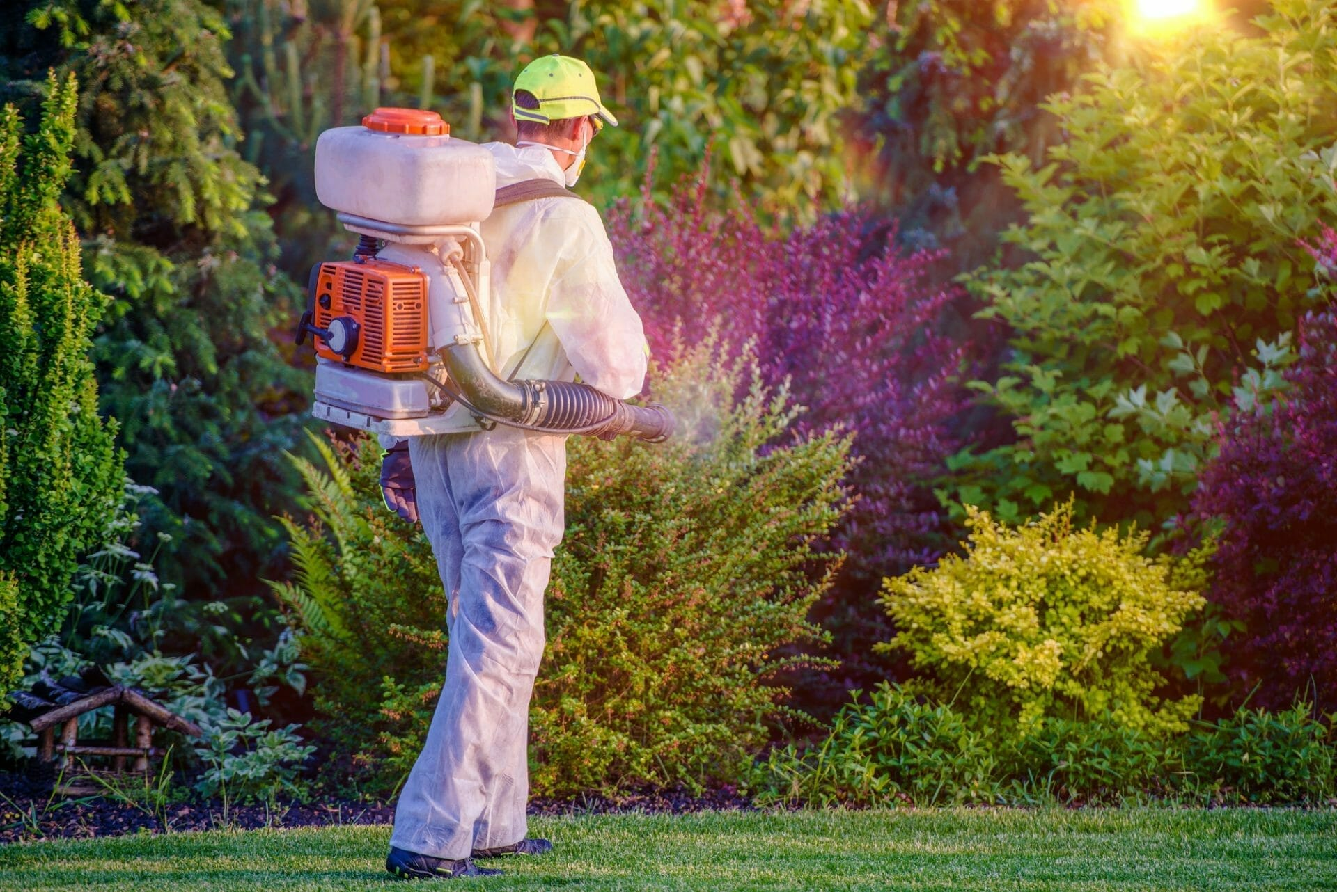 Man Spraying for pest control